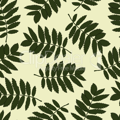Seamless pattern with autumn leaves of a mountain ash