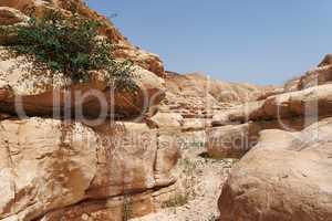 Rocky desert canyon