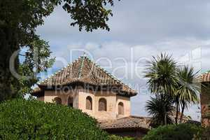 Roof of Alhambra palace seen from Alhambra gardens