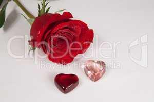 rote Rose und 2 Herzen Freisteller