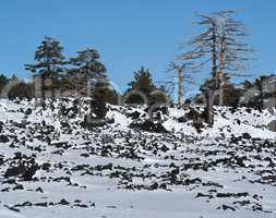 Lava field covered with snow in winter on Etna volcano, Sicily