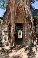Ancient temple Preah Khan in Angkor complex