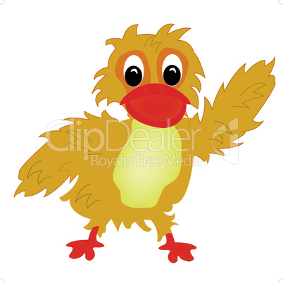 Illustration nice duckling