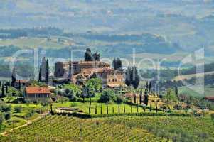 Toskana Weingut - Tuscany vineyard 04