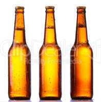 bottle beer isolated