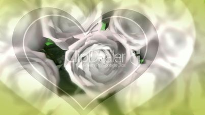 Wedding Roses_HD Loop 59