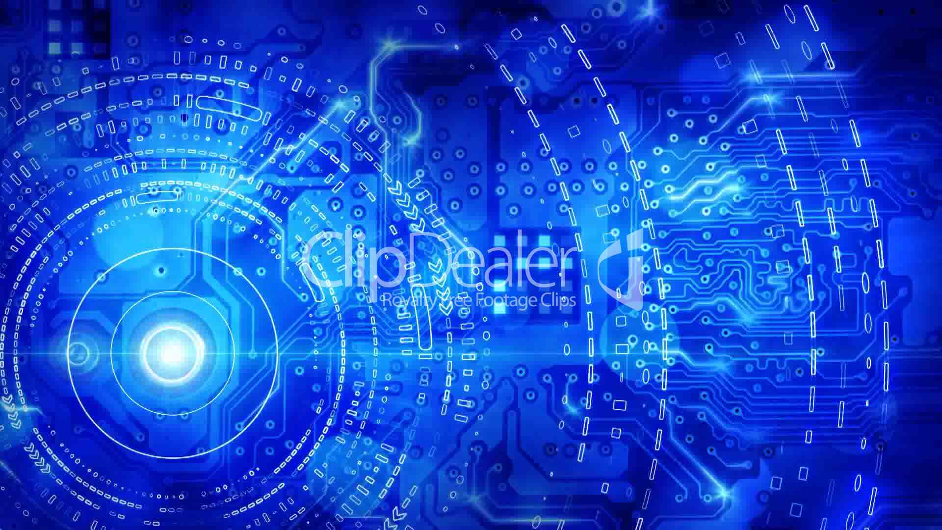 blue computer circuit board background loop royalty  video  stock footage