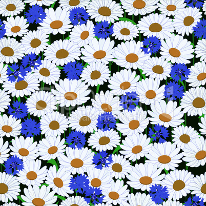 Seamless pattern with camomiles and cornflower background