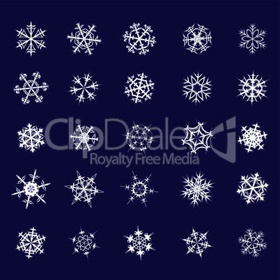 Set of different snowflakes crystal decoration
