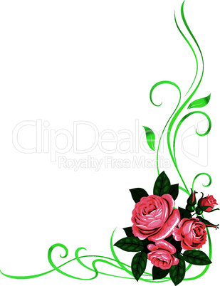 roses frame pattern background decoration isolated