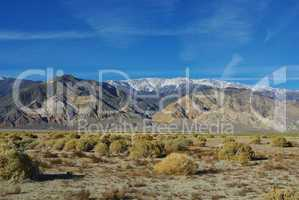 High desert and White Mountains,Inyo National Forest, Nevada