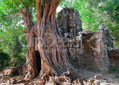 Ancient temple Preah Khan