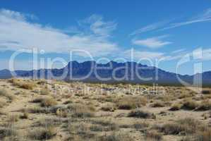 Mojave Dunes and Providence Mountains, Mojave Natural Preserve, California