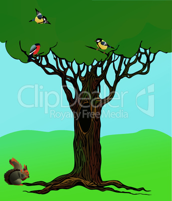 banner with fairy-tale rooted oak tree, squirrel and birds