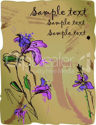 aquarelle sketch of iris flowers on old parchment