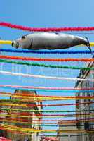 Typical Sardine on Feast Days of the Popular Saints in Lisbon