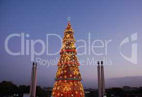 Beautiful tall Christmas tree in Lisbon (at sunset)