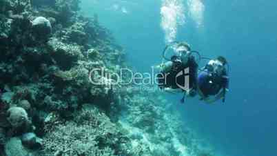 diving couple on coral reef