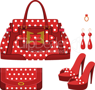 Female bag, purse and shoes on a heel