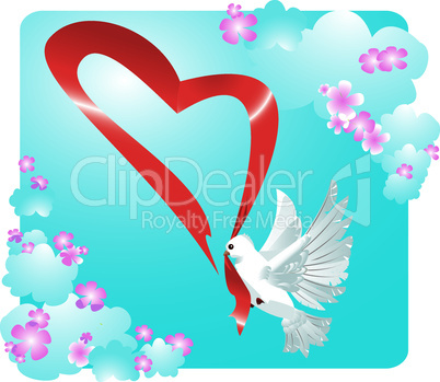 Valentine postcard with dove and heart