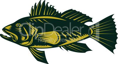 bass sea black retro