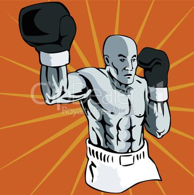 boxer pose