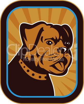 bulldog mongrel dog head retro style