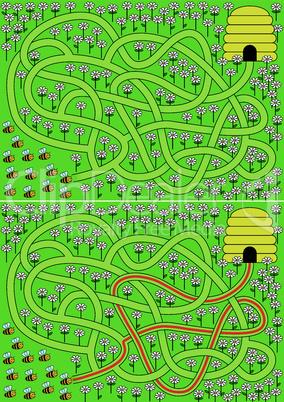 Bees maze