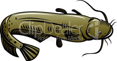 catfish high angle retro