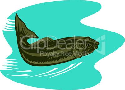 trout below woodcut retro