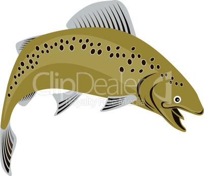trout brown retro