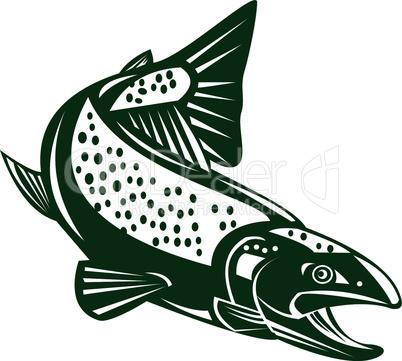 trout diving down retro