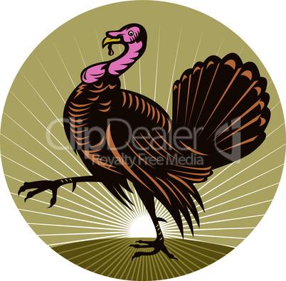turkey marching side retro