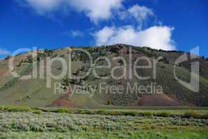 Prairie, pines and mountains in high valley, Salmon Challis National Forest, Idaho