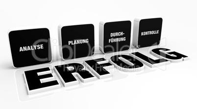 Text Konzept - 3D Erfolg Schwarz 4