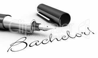 Bachelor! - Stift Konzept