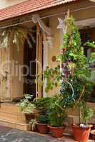 Weihnachten in Kerala, Indien, Christmas in Kerala, India