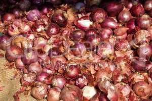 Rote Zwiebeln, Red onions
