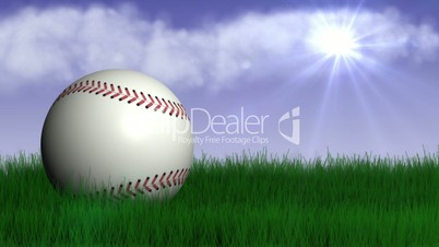 Baseball Ball in Nature - HD1080