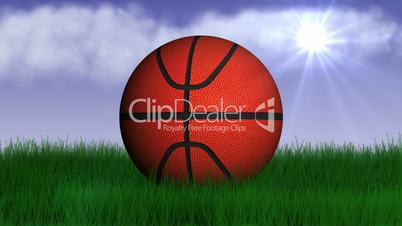Basket Ball in Nature - HD1080