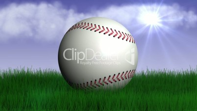 Baseball Ball in Nature 3 -  HD1080