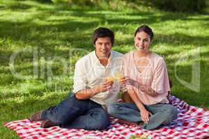 Two friends looking ahead while touching glasses during a picnic