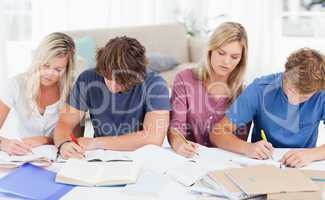 Four students studying hard
