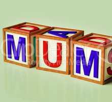 Kids Blocks Spelling Mum As Symbol for Motherhood And Parenting