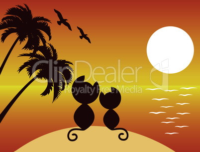 vector cats in love under palms