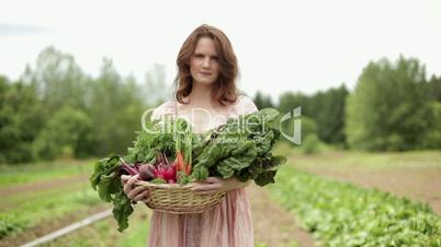 Harvest Dinner - Cross-Media