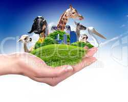 Green world and wildlife protected