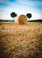 Hay Bale and Trees