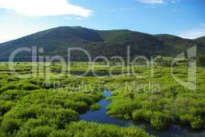 Green high mountain valley with streams and lake, Salmon Challis National Forest, Idaho