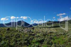 Rocks, meadows and mountains in high secluded valley, Salmon Challis National Forest, Idaho